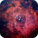 NGC2237,                                Gilles Romani