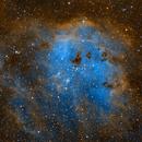 IC 410 and the Tadpoles,                                Michael J. Mangieri