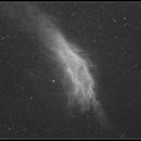 California Nebula - NGC 1499,                                Newton Cesar Florencio