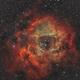 Rosette Nebula,                                Michael Wolter