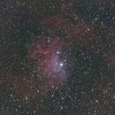 Flame Star Nebula IC405,                                Martin Lysomirski