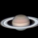 Saturn Near Opposition,                                qcernie