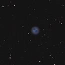 "M97 nebulosa planetaria ""Gufo"",                                Giuseppe Nicosia"