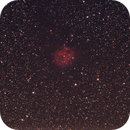 IC 5146 - Cocoonnebula,                                Felix
