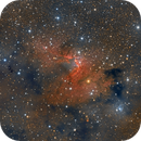 SH2-155 The Cave Nebula,                                Paddy Gilliland