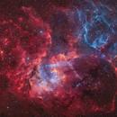 Sh2-132 · Lion Nebula in Cepheus,                                Marcel Drechsler