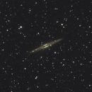 Galaxy NGC 891, Caldwell 23,                                Steven Bellavia