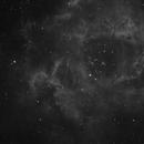 Rosette Nebula,                                Jason Fields