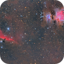 Clouds of Orion - ( The Flame - Horsehead - Running Man and Great Orion Nebulas ) M42 - IC 434 - NGC2024,                                Michel Lakos M.