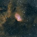Sh2-101:  The Tulip Nebula,                                pterodattilo