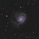 M101,                                Bradisback