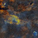 Sadr region with the Crescent Nebula,                                Sendhil Chinnasamy