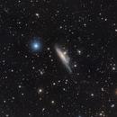 NGC 1532 LRGB Image,                                Eric Coles (coles44)