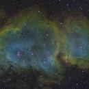 Soul Nebula,                                David Ellison