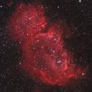 Embryo Nebula,                                drivingcat