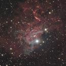Flaming Star Nebula,                                Damien Cannane