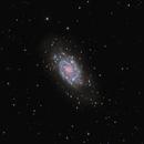 NGC 2403,                                Tim