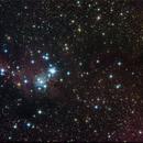 ngc 2264 and the Cone Nebula,                                andrealuna
