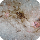 The Black Widow (dark nebulae complex),                                Giuseppe Donatiello