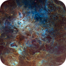 The Tarantula Nebula - Hubble Palette - New Process,                                Eric Coles (coles44)