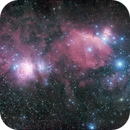 Orion Complex HaRGB QHY163 Rokinon 135mm,                                Eric Walden