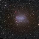 NGC6822 Barnard's Galaxy,                                Michael Feigenbaum