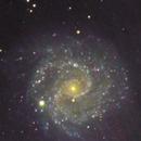 NGC 3184  LRGB,                                Lewie