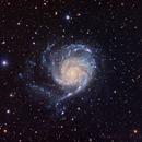 M101 Spiral Galaxy,                                Tony King