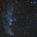 Witch Head Nebula,                                Jesse Krautwurst