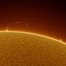Sun on 2020-03-28,                                Frédéric DAUDIN