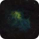 The Lion Nebula,                                John Stiner