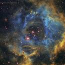 NGC2239 hubble palette,                                Fabio Mortari - Rimini