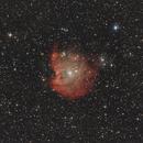NGC2174 (Monkey head nebula) - Orion,                                Emmanuel Fontaine