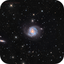 M 100,                                Mike Miller