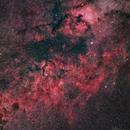Cygnus Area,                                Jerry Huang