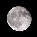 Moon - Nov 2020,                                Robert Wohleb