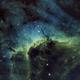 The Pelican Nebula IC5070/IC5067,                                John Kulin