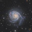 M101-galaxie de pinwhell,                                Astropotes