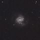 M61 and Supernova AT2020jfo,                                Nlawrie94