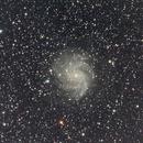 Fireworks Galaxy,                                Robin Clark - EAA imager