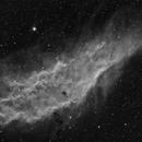 NGC 1499 HA,                                Vince