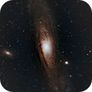 M31 Andromeda,                                Rhett Herring