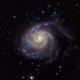 M101 - Pinwheel Galaxy - LRGB - Crop,                                  Greg Polanski