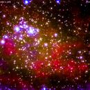 ngc  6910 nebulosa vicino a  sadr nel  cigno  con stella cadente,                                Carlo Colombo