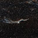 NGC6960 Veil Nebula,                                Annette Sieggrön