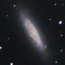 NGC6503,                                Carlo Caligiuri