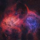 The Lion nebula,                                Henrique Silva