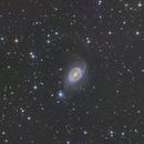 Ring Galaxy in Horologium,                                Geoff