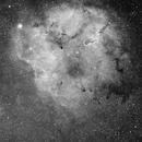 IC1396 grand champ en Ha,                                pam-pg