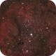 The Elephant´s Trunc Nebula (IC 1396A),                                Nicolai Wiegand